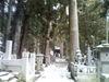 2008_117_1228